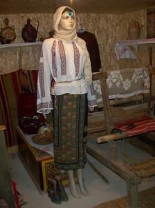 muzeu Gioni Badea 008